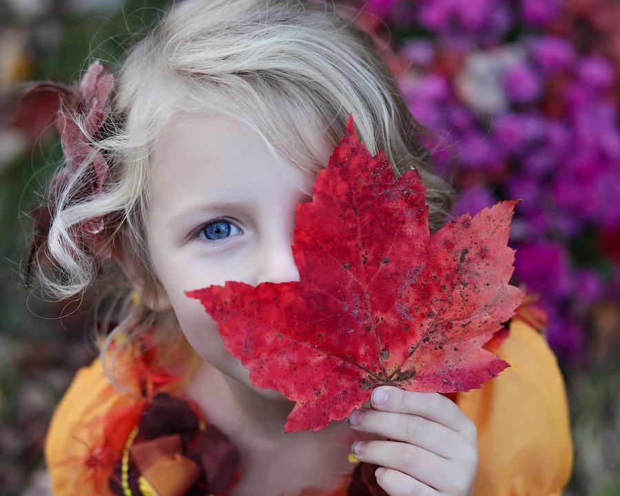 5 Fun Fall Family Reunion Activities -Scavenger Hunt